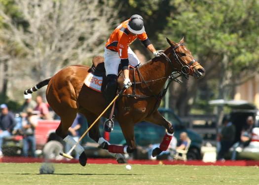 USPA Piaget Gold Cup photos