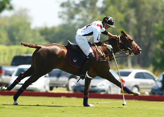 USPA Piaget Gold Cup photos 4