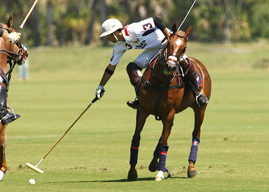 USPA Piaget Gold Cup photos 5