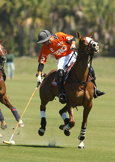USPA Piaget Gold Cup photos 6